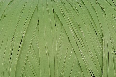 raphia synthétique vert mousse