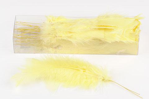plume sur pic jaune