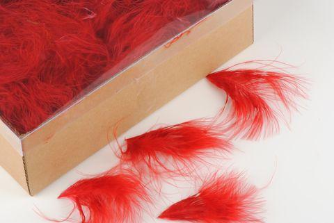 plume duvet rouge
