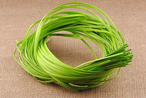 osier plat 6 mm vert