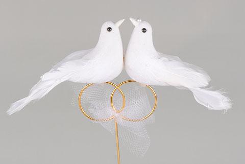 couple de colombes sur pic