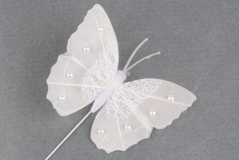 papillon blanc perle