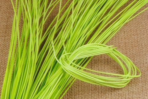 osier rond 2 mm vert