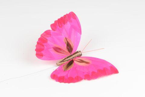 papillon XL fushia 18 cm