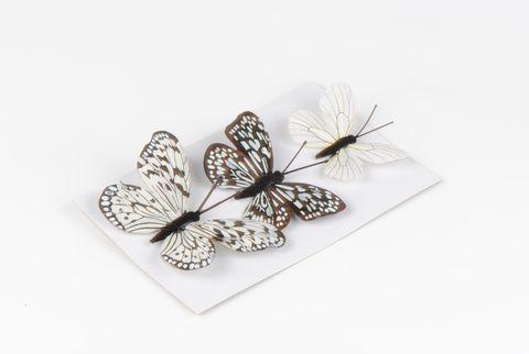 papillons noirs x3
