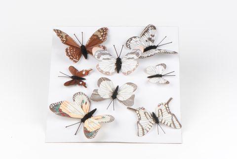 papillons assortis