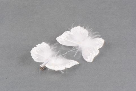 papillon blanc plume
