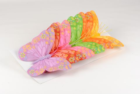 papillon xxl