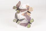 papillon vert sur clip