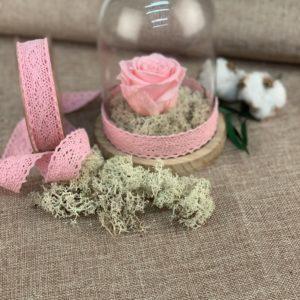 rose eternelle rose