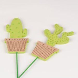 cactus sur pic