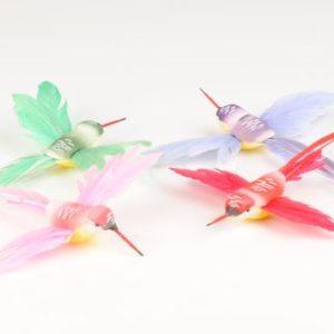 oiseau colibri