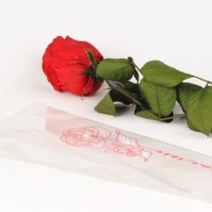 etui a rose rose rouge
